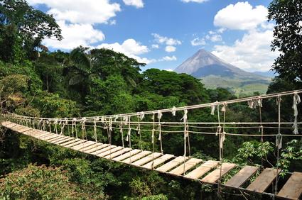 Brücke im Dschungel © platynus - Fotolia.com
