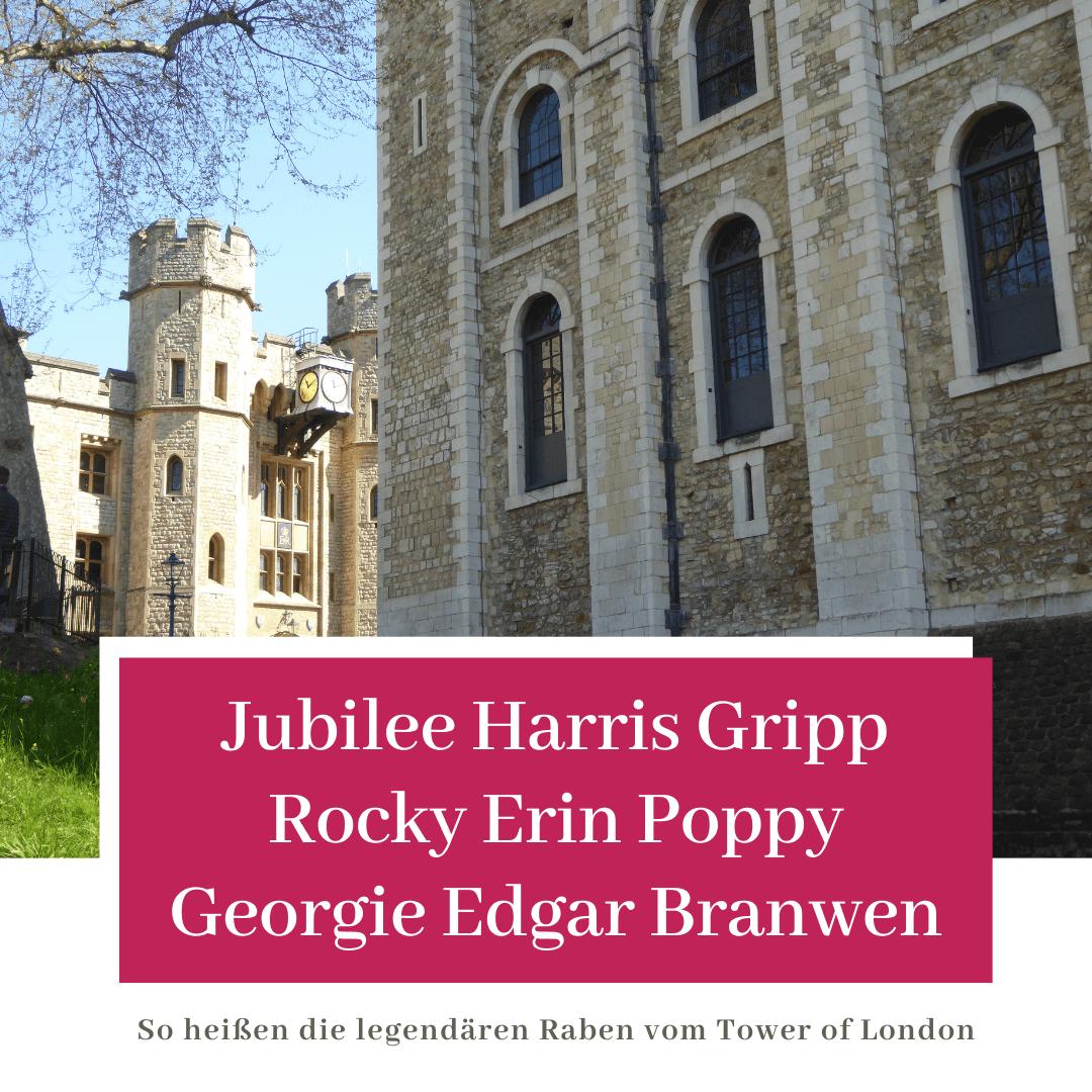 Jubilee Harris Gripp Rocky Erin Poppy Georgie Edgar Branwen